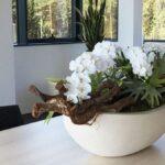 Plastične tegle za cvijeće idealne su za stan